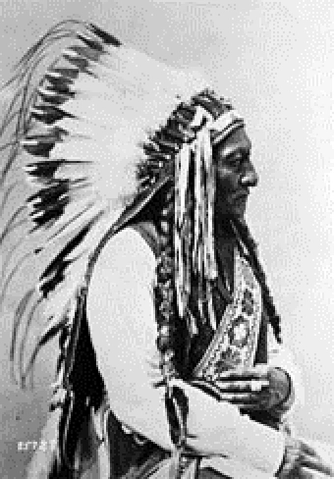 Chief Sitting Bull, Nordamerika